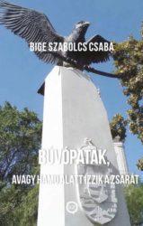 Bige Szabolcs Csaba: Búvópatak, avagy hamu alatt izzik a zsarát