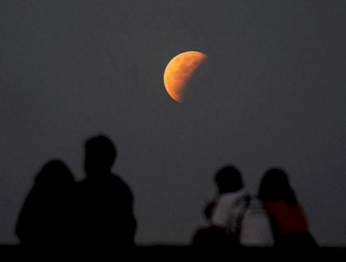 A Hold és a kölyök